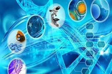 اختصاص 60 درصد صادرات دانش بنیان به حوزه زیست فناوری