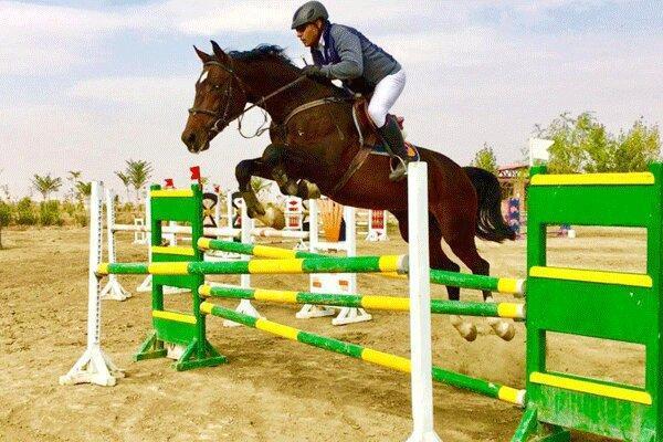 حدود 500 اسب ورزشی در زنجان وجود دارد