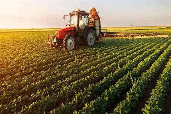 اختصاص 104 میلیارد ریال به کشاورزی کهگیلویه و بویراحمد