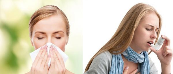 تفاوت آسم و آلرژی چیست؟ (مقایسه علت، علائم و درمان هرکدام)